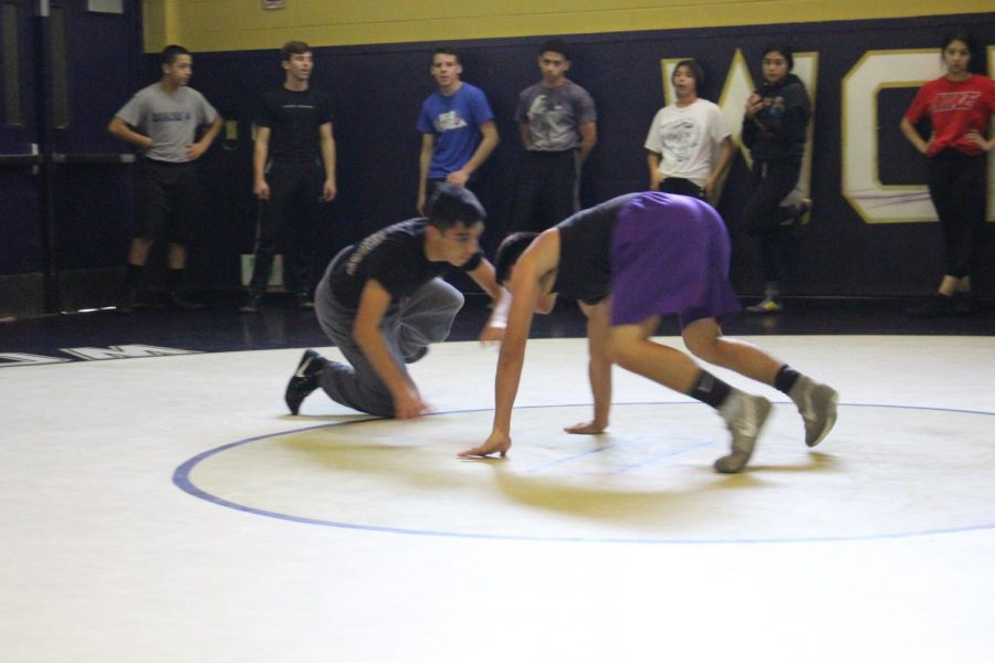Boys+wrestlers+Jacob+Maradiaga+and+Chris+wrestler+during+a+recent+practice.