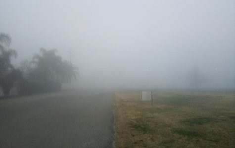 A dense fog blankets the area, limiting visibility to just a few meters.