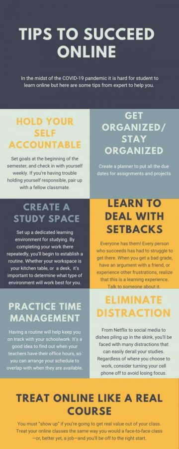 Tips to Succeed Online During Diatance Learning